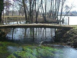 Oasi naturalistica di Villaverla  Wikipedia
