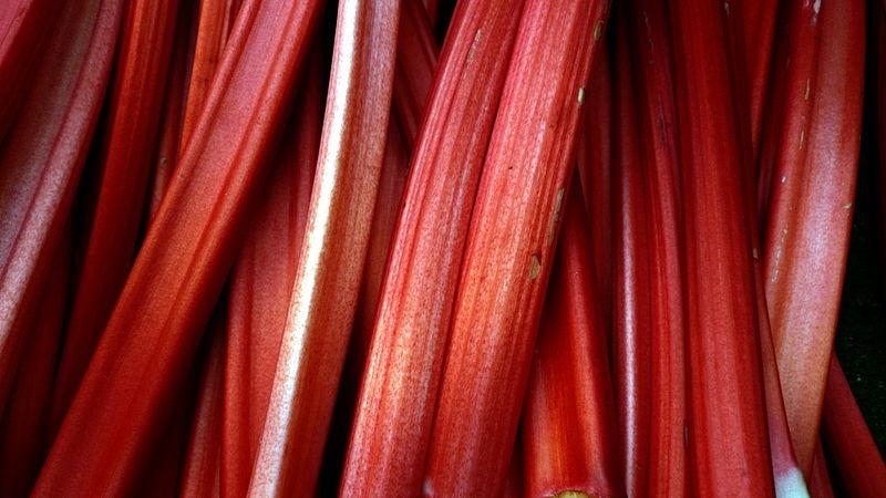 File:Rhubarb in Borough Market.jpg