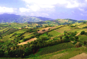 Hills in Batanes, Philippines