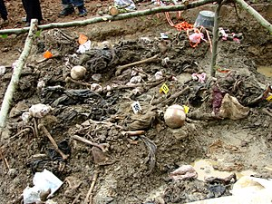 English: An exhumed mass grave in Potocari, Bo...