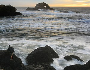 A photographer between waves and mussels