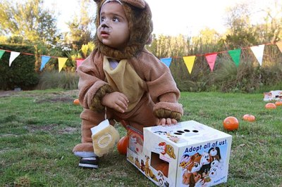 Toddler in Costume at Fall Festival Pumpkin Patch Event