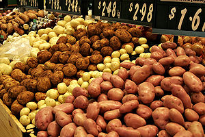 Potatoes are one of the most used staple foods.