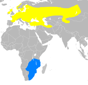 English: Approximate range map for the Corncra...