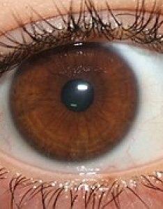 Mystrangeirisg also eye color wikipedia rh enpedia