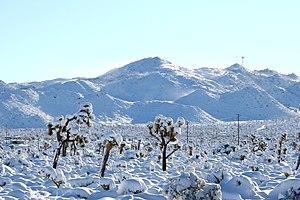San Bernardino Suburb: Yucca Valley-Joshua Tree