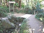 Caminho seguido pelo rio Tietê, logo após seu nascimento, dentro do Parque Nascentes do Tietê, em Salesópolis