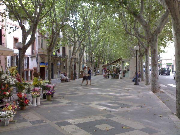 Rambla De Palma - Wikipedia La Enciclopedia Libre