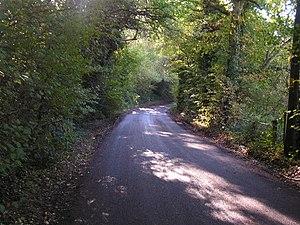 Narrow country lane.