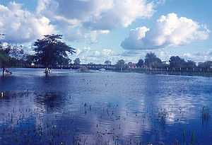 The Pantanal, Brazil, seen here in flood condi...
