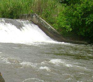 Fluir como un río con los cambios de vida es la clave. Si lo impides, mueres.