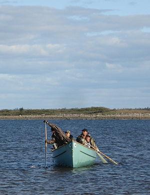 Cris de Chisasibi, à la Baie James, au Québec ...