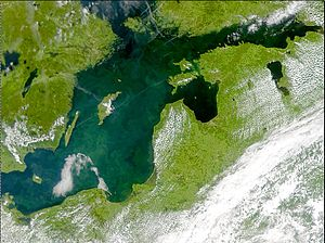 Phytoplankton bloom in the Baltic Proper, July...