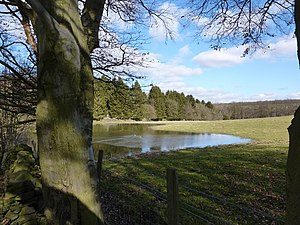 English: An impromptu pond On Bent Lane, near ...