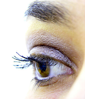 Female eye lashes with makeup