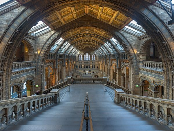 File Natural History Museum Main Hall London Uk - Wikimedia Commons