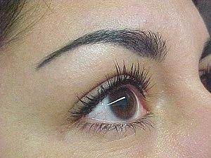 Permanent Makeup - Eyebrow Procedure