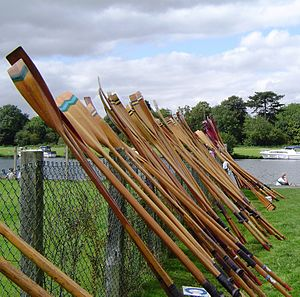 Sets of traditional wooden oars