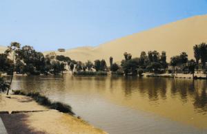 English: Oasis near Ica in Peru