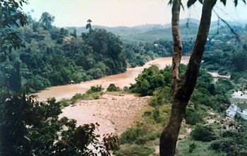View of Sungei Tembeling from Taman Negara Nat...