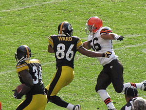 Hines Ward blocks for Rashard Mendenhall