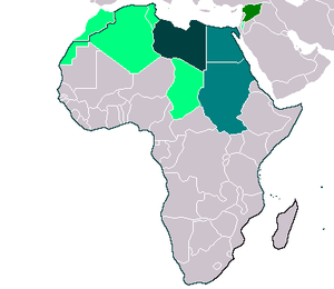 Libya and Friends