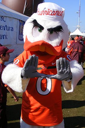 Sebastian the Ibis, mascot of the University o...