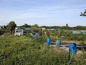Allotment Gardens.