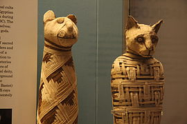 British museum, Egypt mummies of animals (4423733728).jpg