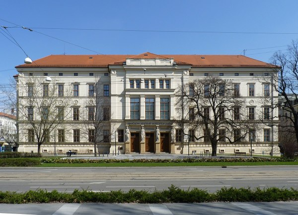 Fine Arts Academy