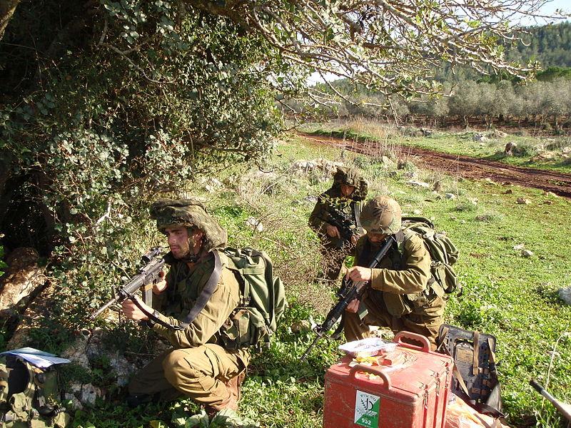 File:Guerilla Warfare Training.JPG