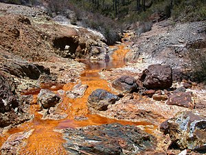 Acid mine drainage causes severe environmental...