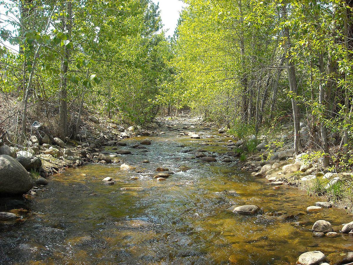 Google Images Fall Wallpaper Shingle Creek British Columbia Wikipedia