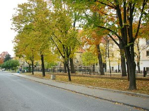 The leaves changing color in Levoča, 2006