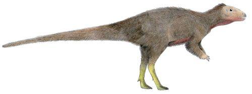 Trinisaura2.jpg
