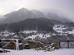 English: View of the Piatra Craiului mountains...