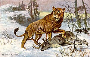 This Painting of a Cave Lion (Panthera leo spe...