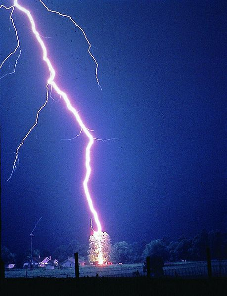 File:Lightning hits tree.jpg