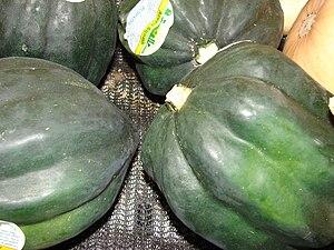 English: Cucurbita pepo (acorn squash). Locati...