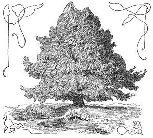The world tree Yggdrasil. At the foot of the t...