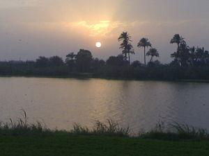 العربية: هذه صورة التقطت لعزبة النيل العربية: ...