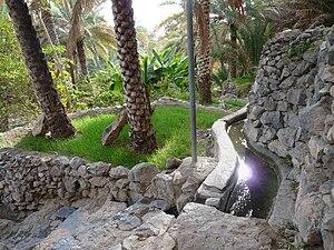 English: Falaj in Misfah (Oman) Français : Fal...