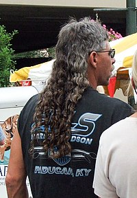 mullet  Wiktionary