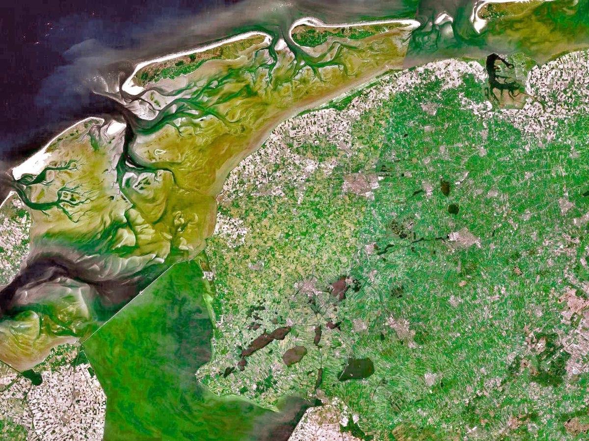 Marais maritime  Wikipdia