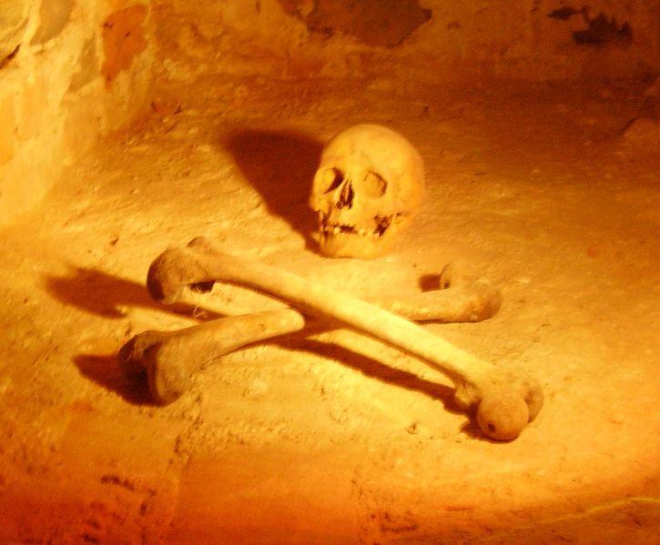 File:Liskiava-cellar.jpg