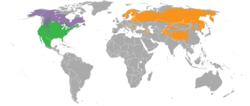 Keseluruhan penyebaran spesies Lynx.