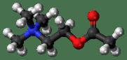2-Acetoxy-N,N,N-trimethylethanaminium