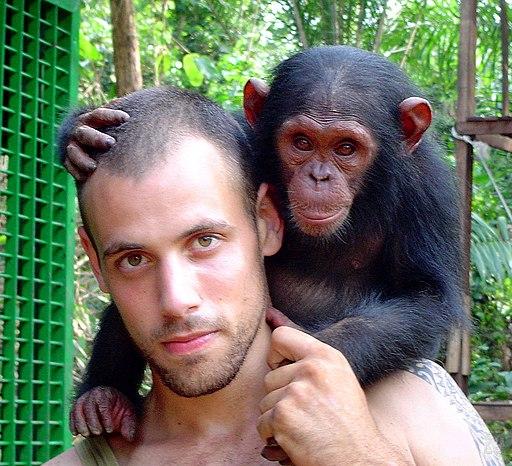 La diferencia entre chimpancés y humanos está en el lenguaje verbal