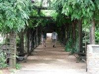 Directory of US Arboretums - ProFlowers Blog
