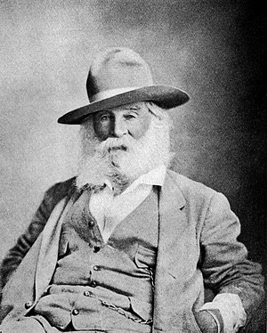 English: Walt Whitman Age 65